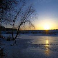 зимний пруд :: Александр Абакумов