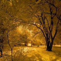 Ночные тени :: Сергей Босов