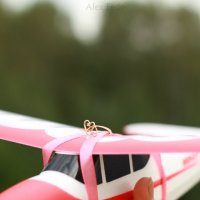 Air LoveStory :: Александра Федосеева