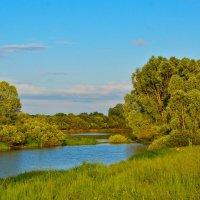 Пейзаж на Днепре :: Юрий Рекеть