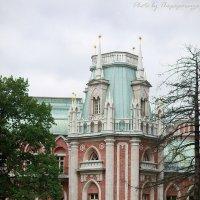Прогулка :: Виктор Мушкарин (thepaparazzo)