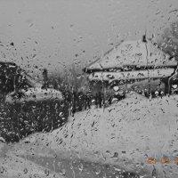 Дождь :: Ольга Кривикова