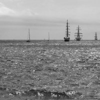 Парусники в Цемесской бухте(Ч/Б вариант) :: Валерий Дворников