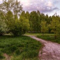 Дорожки для неспешных прогулок... :: Елена Черненко
