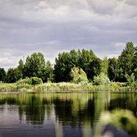 озеро в парке :: Ирина Стугина