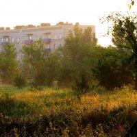 Ранним утром в посёлке :: Marina Timoveewa