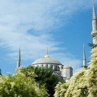 Голубая мечеть :: Марина Сиряк