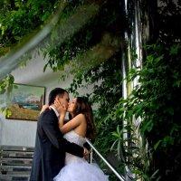 Свадьба Миши и Юли :: Ольга Куценко
