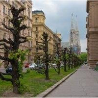 Венская улочка :: Евгений Нелихов