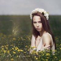 Лиза :: Стас Кашин