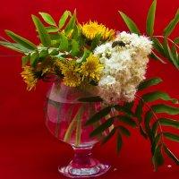 цветы :: Андрей Леднев