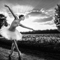 Russian ballet :: Георгий Чернядьев