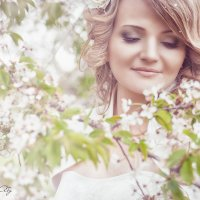 цветы вишни :: Абу Асиялов