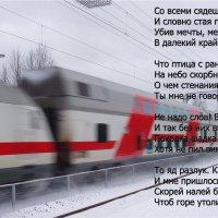 ... :: Сергей Новиков