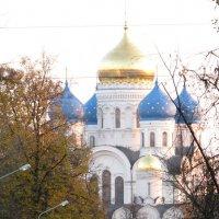 Николо-Угрешский монастырь :: Анна