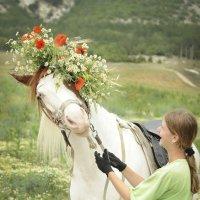 люди...кони. :: Марина Брюховецкая