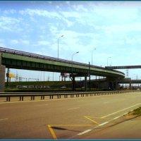 Мост в городе Люберцы :: Ольга Кривых