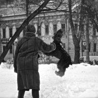 Зима :: Илья Ищенко