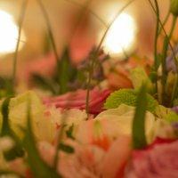 мир цветов :: Юлия Другова