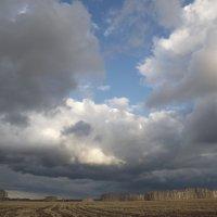 Небо хмурится над русскими полями... :: Надежда Федяева