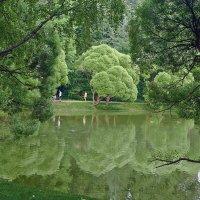 Лето, у озера :: Viacheslav Birukov