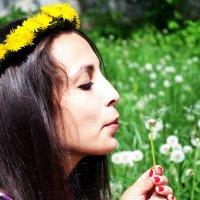 В поле с одуванчиками :: Дина Жакупова
