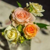 розы :: Анастасия Садовская