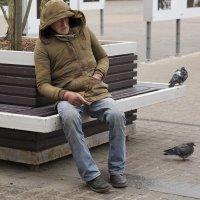 Кому-то спится и на скамейке :: MVMarina