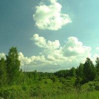 зелёный дол :: Михаил Жуковский