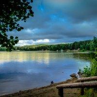 Озеро Еловое :: Марк