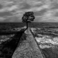 Одиночество :: Динар Зиганшин