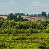 Природа не далеко от города! :: Павел Данилевский