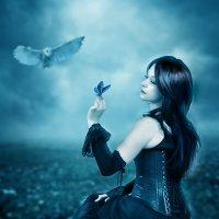 Белая сова :: Светлана Волконская
