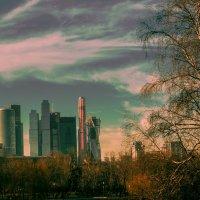Москва-Сити :: Риша 13