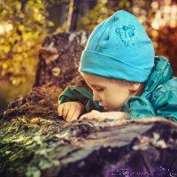 В лесу :: Евгений Тихонов