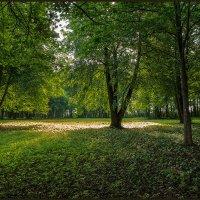 В монастырском саду :: Евгений Никифоров