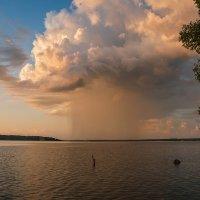 небесный гриб :: Galina
