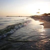 море на закате :: Тамара