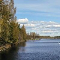На озере в Иматре :: Valerii Ivanov