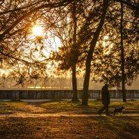 В парке... :: Богдан Петренко