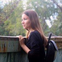 Забор :: Ксения Королева