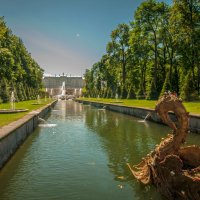 Канал в Петергофе :: Алексей Кошелев