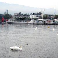 Цюрихское озеро. :: An-na Salnikova