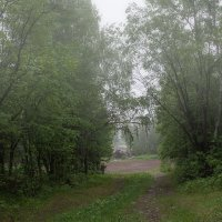 Вечерний туман :: vladimir