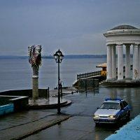 В дождь :: Лариса Коломиец