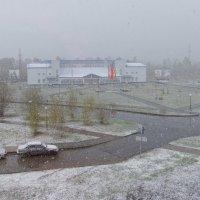 Шестое июня 2014 года - такое лето. :: Валерий Пахомов