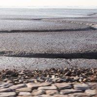 Желтое море,отлив :: Эмиль Файзулин