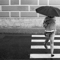 Легкий дождь :: Михаил Топилин