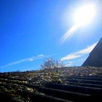 Пирамида :: Катя Бокова