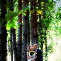 В лесу :: марина алексеева